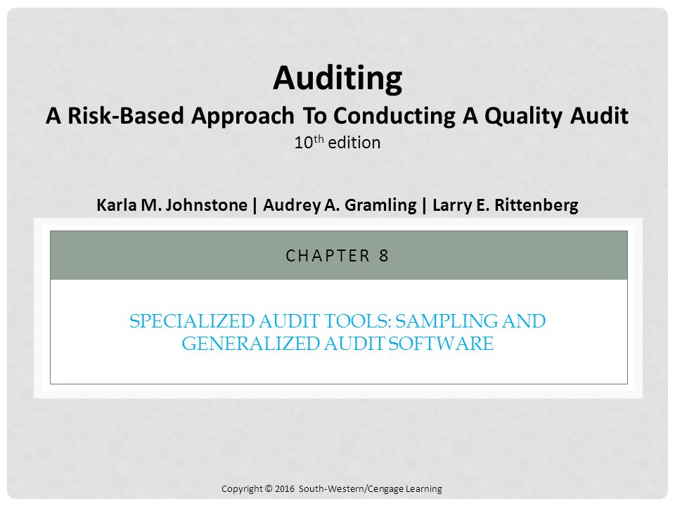 generalized audit software packages