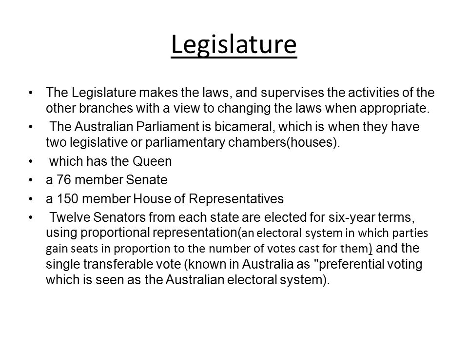 Legislature The Legislature makes the laws, and supervises the activities of the other branches with a view to changing the laws when appropriate.