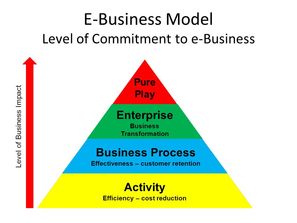 E-Business Model Level of Commitment to e-Business