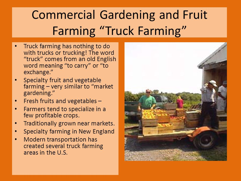 Commercial Gardening And Fruit Farming Truck