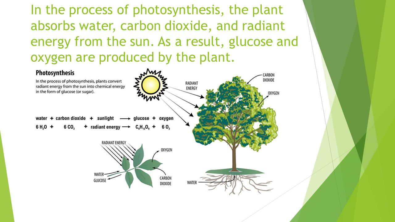 energy produced by the sun Best answer: the bolometric luminosity of the sun is 3826e+26 watts, which means that 3826e+26 joules of energy are produced in the sun's core each second that.