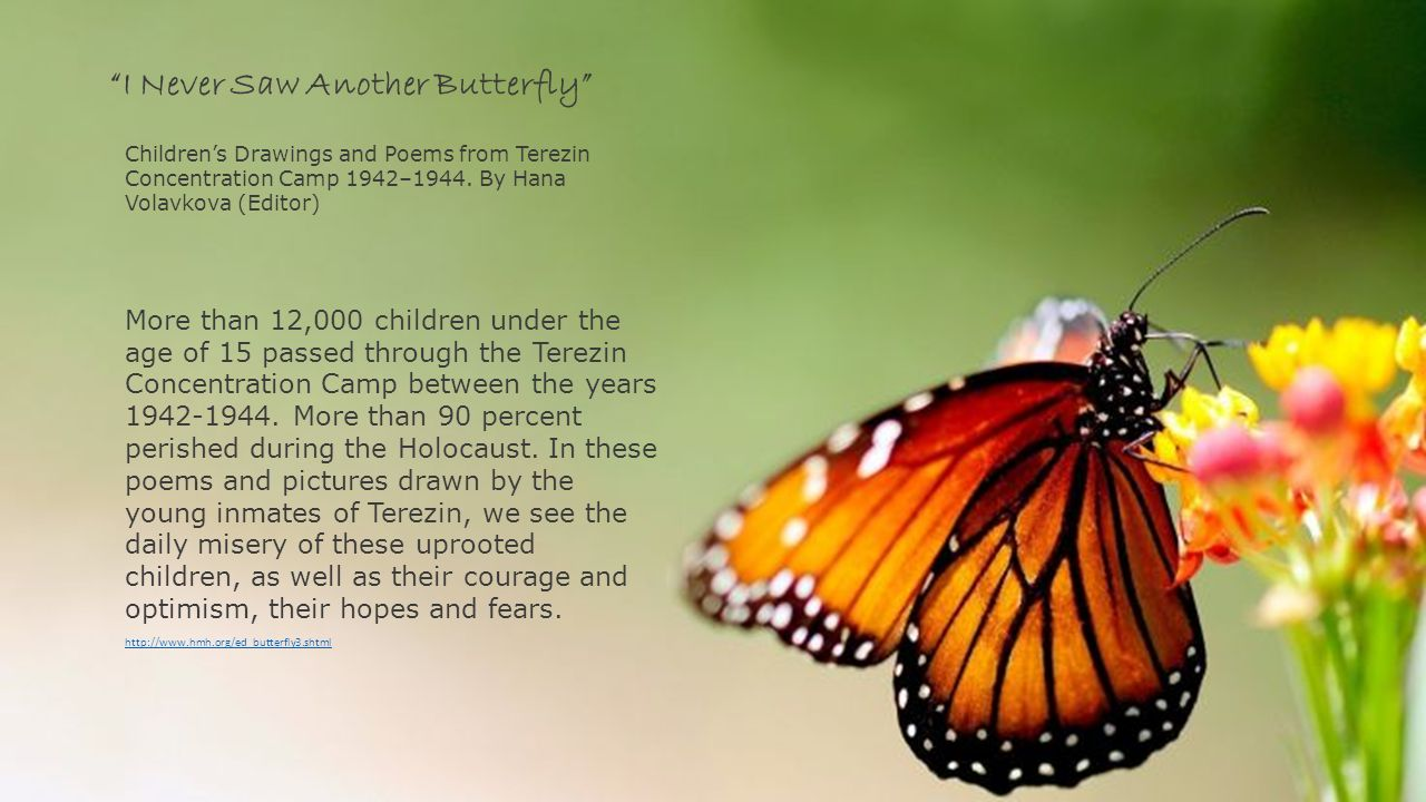 The butterfly project i never saw another butterfly ppt video i never saw another butterfly biocorpaavc Gallery