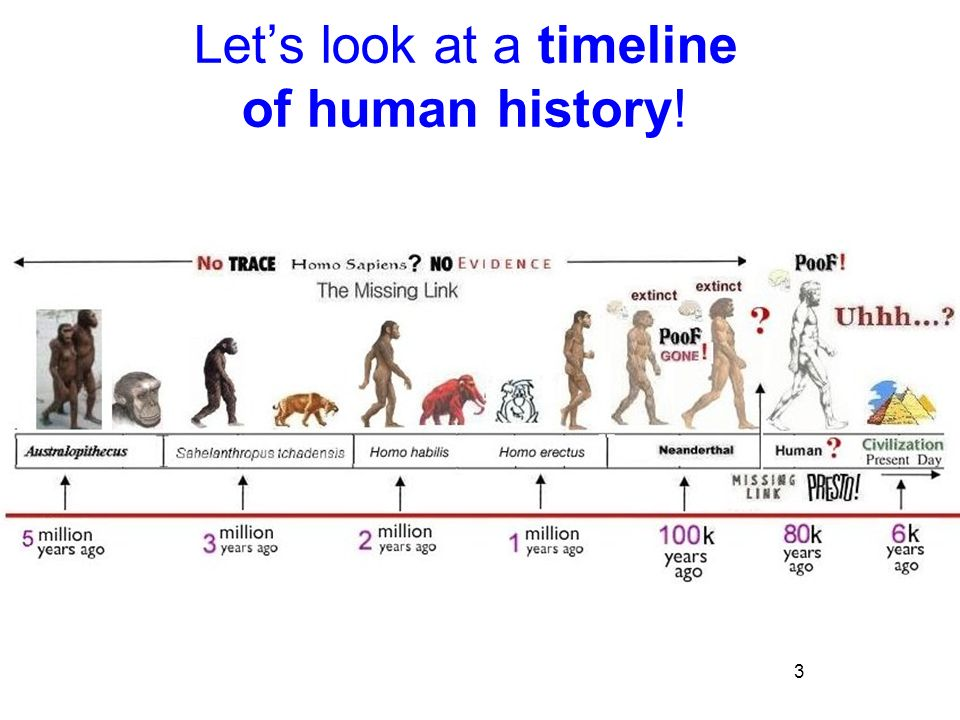 a look at the history of human civilization History of the human civilization  let us look at the curved line l of this function, taking as a datum the coordinate of the point d (see figure 1) on the .