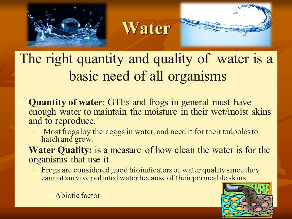 Water Biota as Bioindicator of Water Quality
