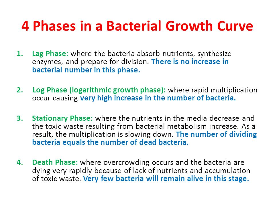 four phases of the bacterial growth curve Occur during bacterial growth phases in batch culture two bacterial  the  normal bacterial growth curve has four stages: lag phase, log (expo- nential)  phase.