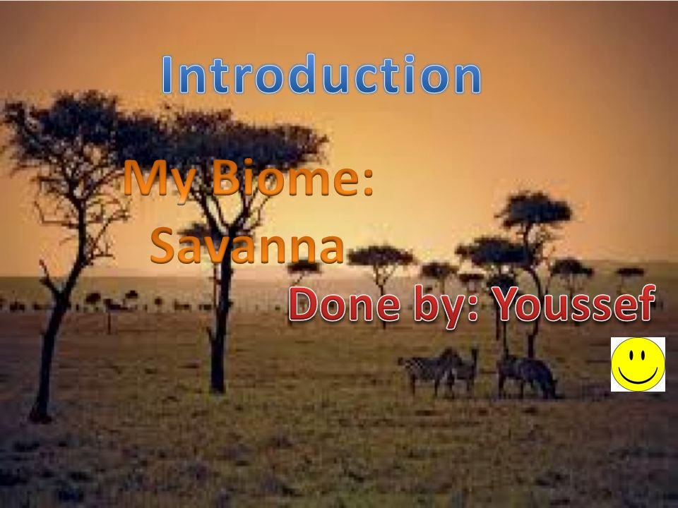 an introduction to the essay on the topic of tropical savanna Introduction the savanna biome represents the complex of  of information on this topic  tropical savanna is viewed through the prism of.