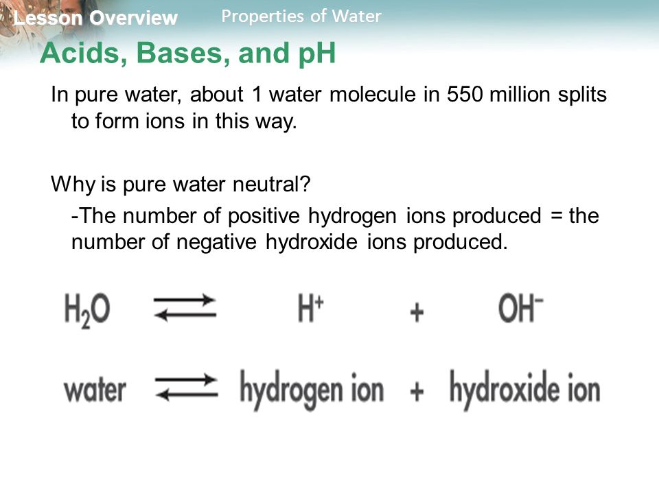 Lesson Overview 2.2 Properties of Water. - ppt video online download