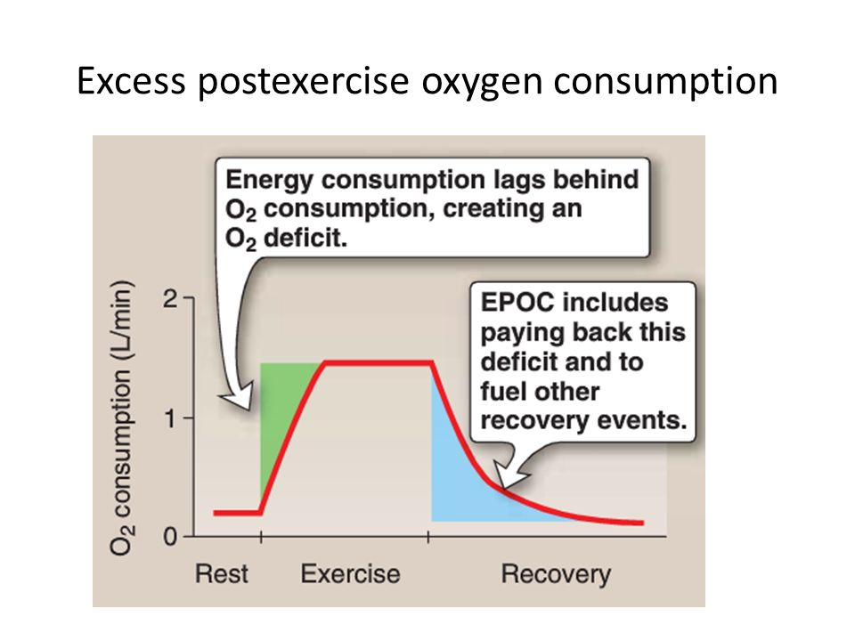 ventilation and oxygen consumption On an average, 80% of oxygen consumed is converted to co2 (the remaining 20% is converted to water), so that as oxygen consumption increases, co2 production also increases, which drives ventilation to supply more oxygen and eliminate more co2.