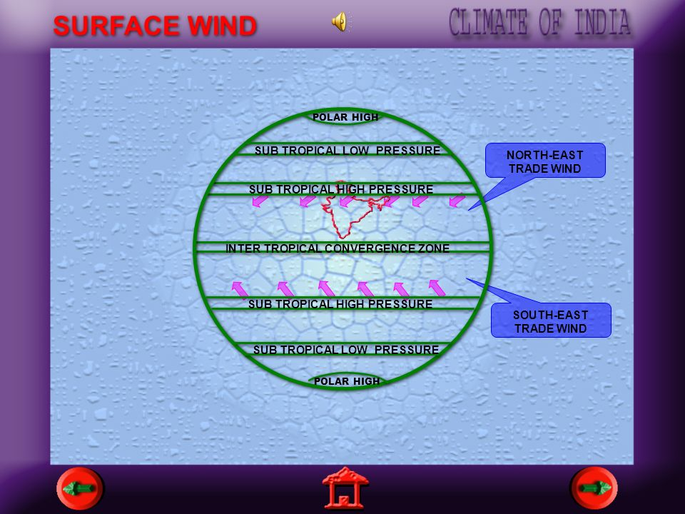 SURFACE WIND NORTH-EAST TRADE WIND INTER TROPICAL CONVERGENCE ZONE