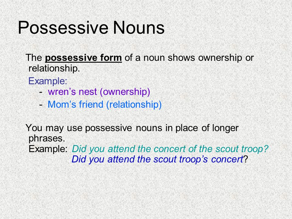 Kinds of Nouns. - ppt download