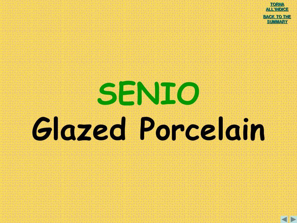 SENIO Glazed Porcelain
