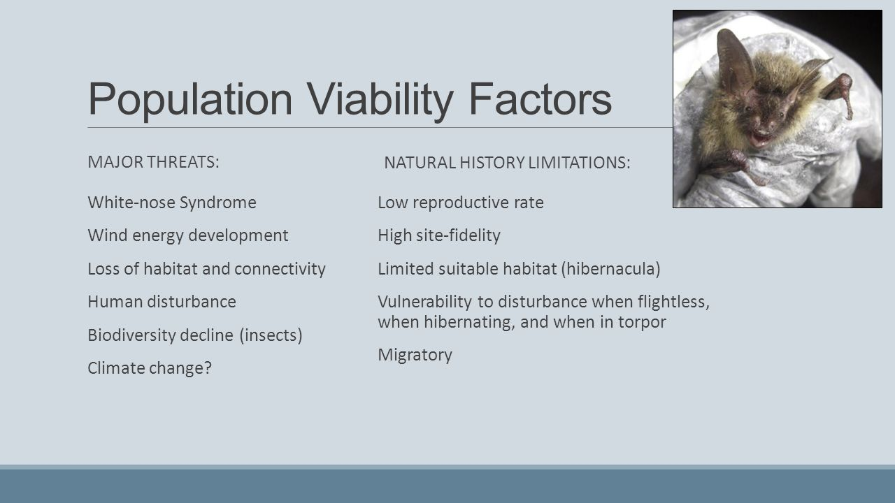 population and habitat viability analysis Future habitat and population viability of set to explore how climate variability and change may affect habitat and population dynamics for viability analysis.