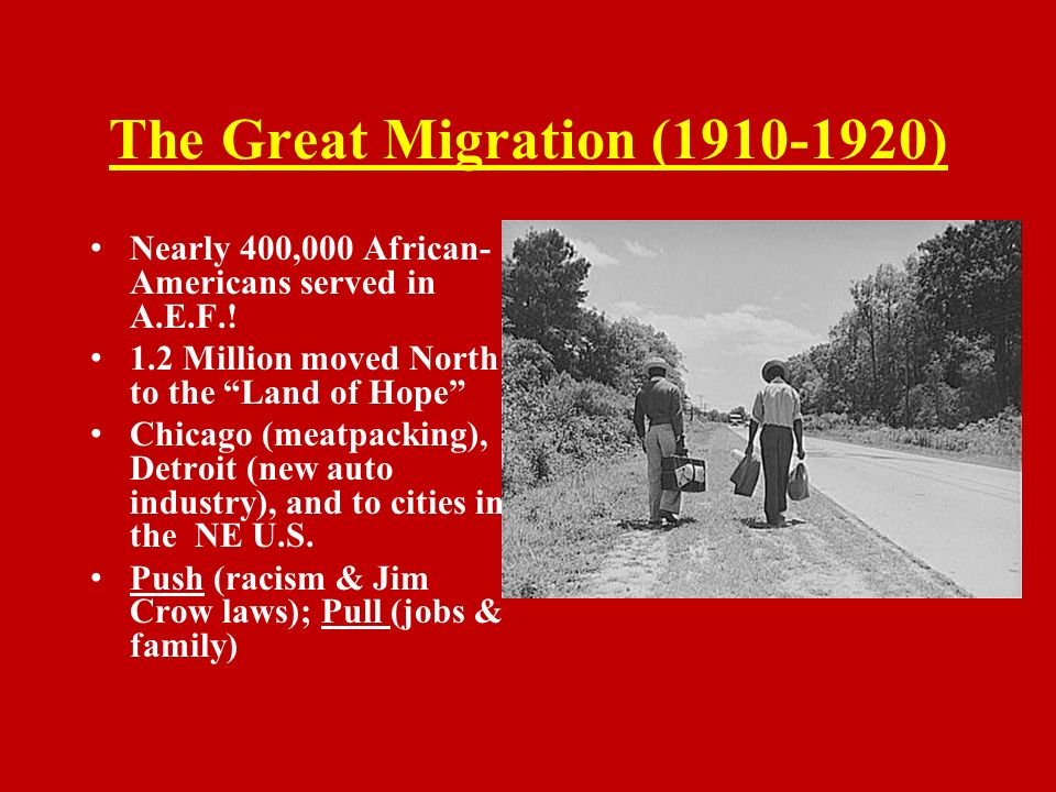 Immigration and Discrimination in the 1920″s Essay