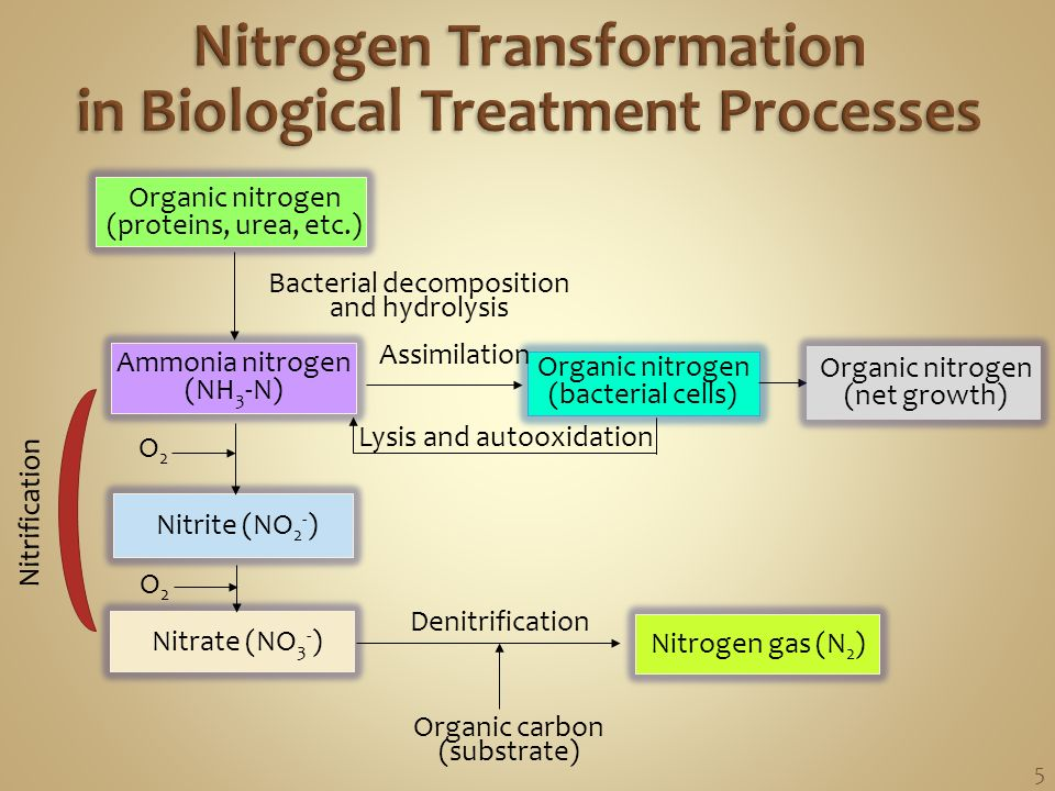 how to make nitrogen gas organic
