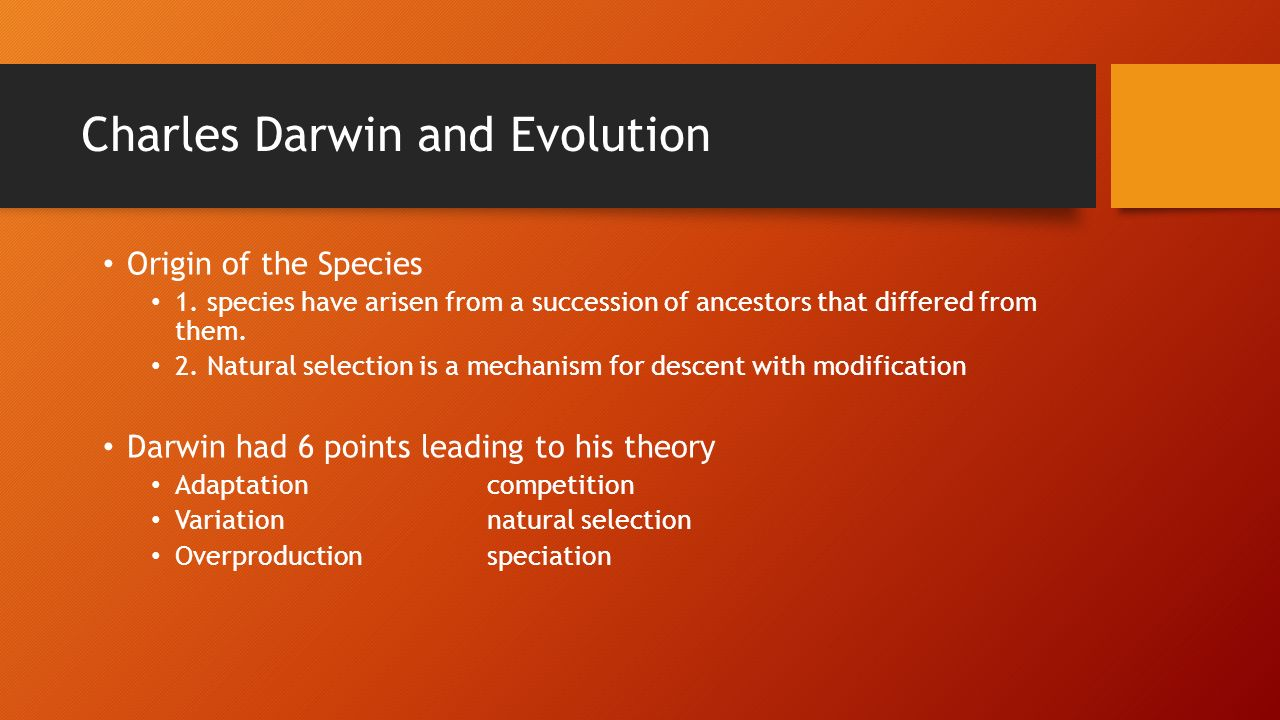 the observations of charles darwin leading to the theory of evolution by natural selection Who: charles robert darwin when: february 12, 1809 - april 19, 1882 where: shrewsbury, england what: father of the theory of evolution by natural selection charles darwin's theory of evolution by natural selection is hailed in the mainstream scientific community as the unifying theory of the life sciences.