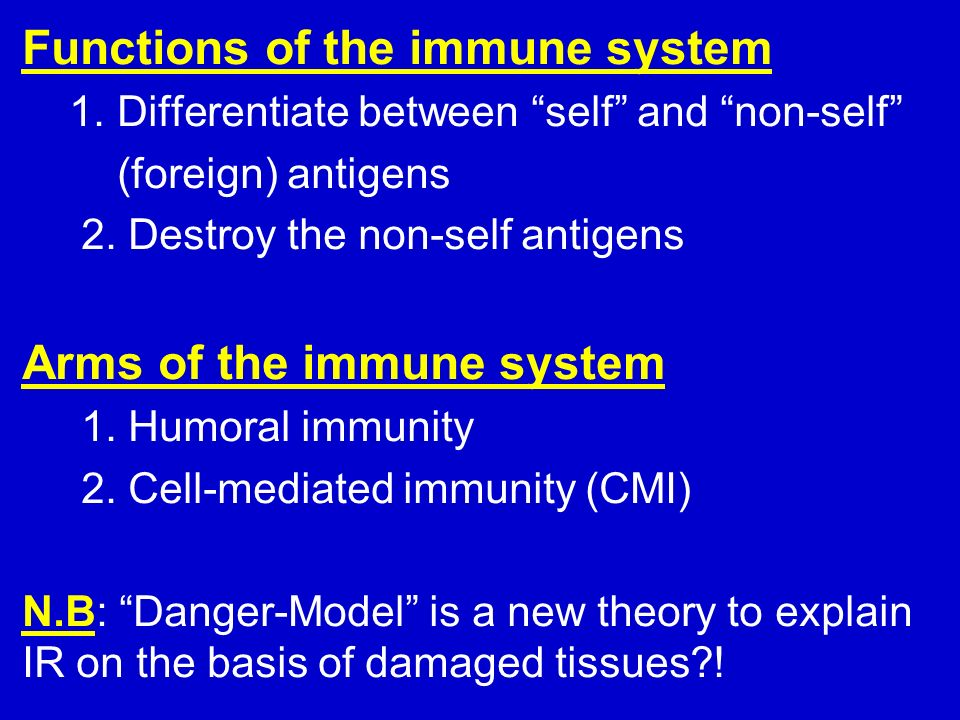 the functions of the immune system Every body has an inbuilt immune system which protects it from diseases, bacteria and germs this system has a lot of different parts.