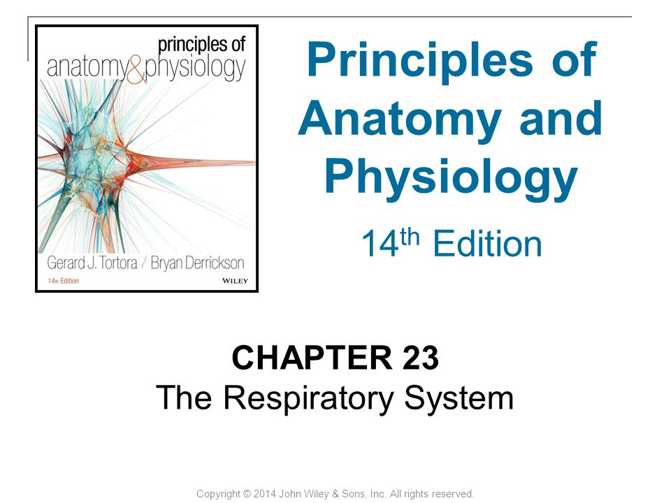 Principles Of Anatomy And Physiology 14th Edition Binder - anatomy ...