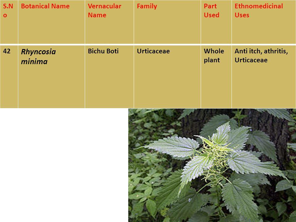 peganum harmala medicinal uses pdf