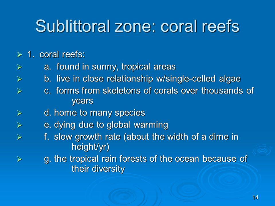 Sublittoral zone: coral reefs