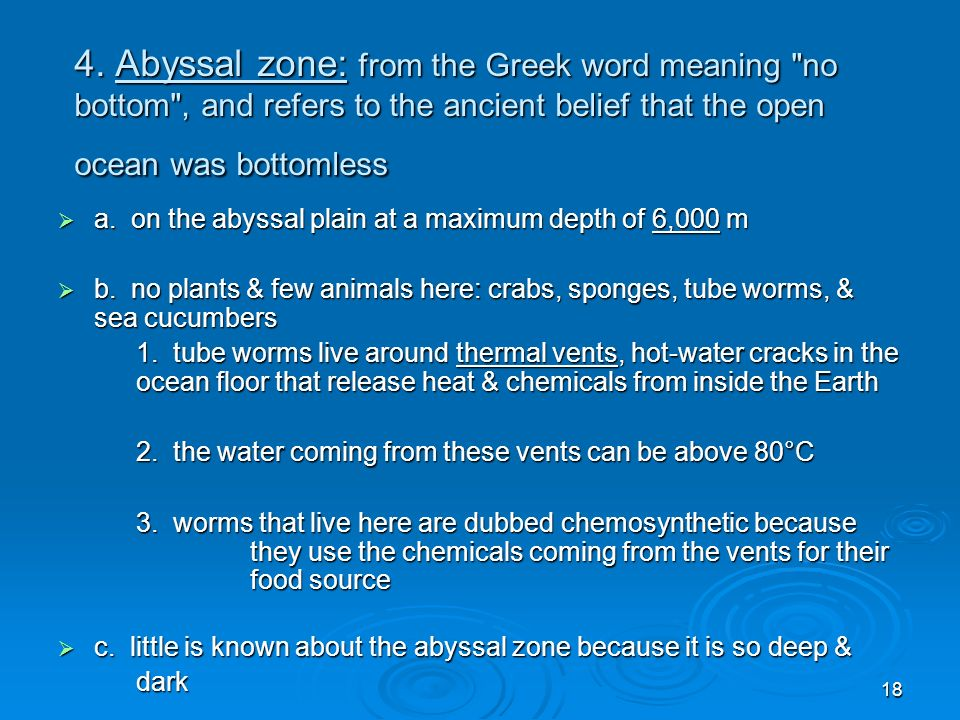 4. Abyssal zone: from the Greek word meaning no bottom , and refers to the ancient belief that the open ocean was bottomless