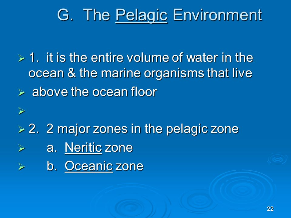 G. The Pelagic Environment