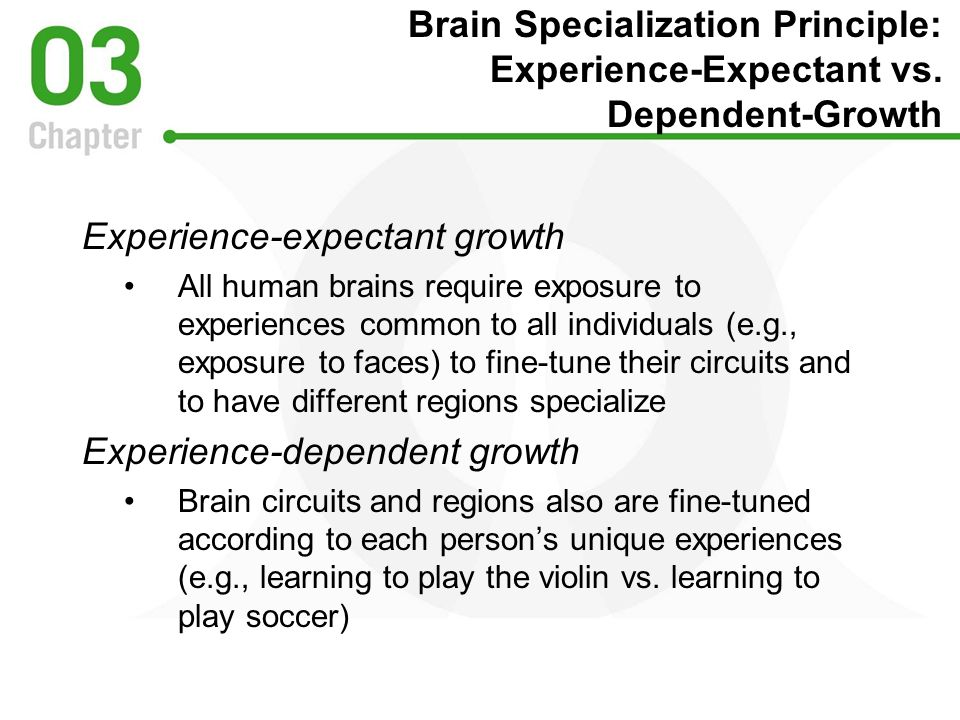 Experience-expectant growth