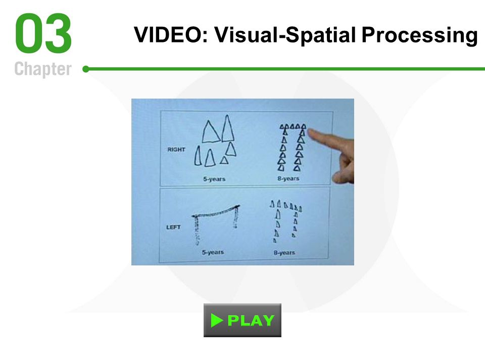 VIDEO: Visual-Spatial Processing
