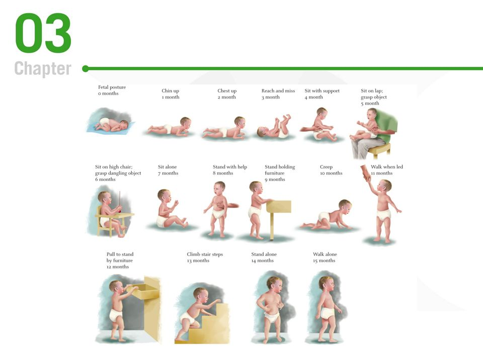FIG 3.5 Locomotor skills improve rapidly in the 15 months after birth and progress can be measured by many developmental milestones.