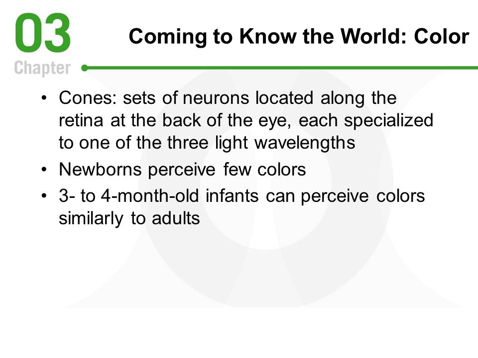 Coming to Know the World: Color