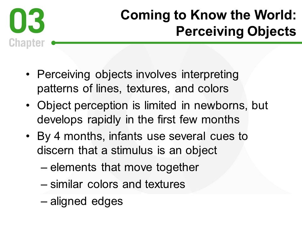 Coming to Know the World: Perceiving Objects