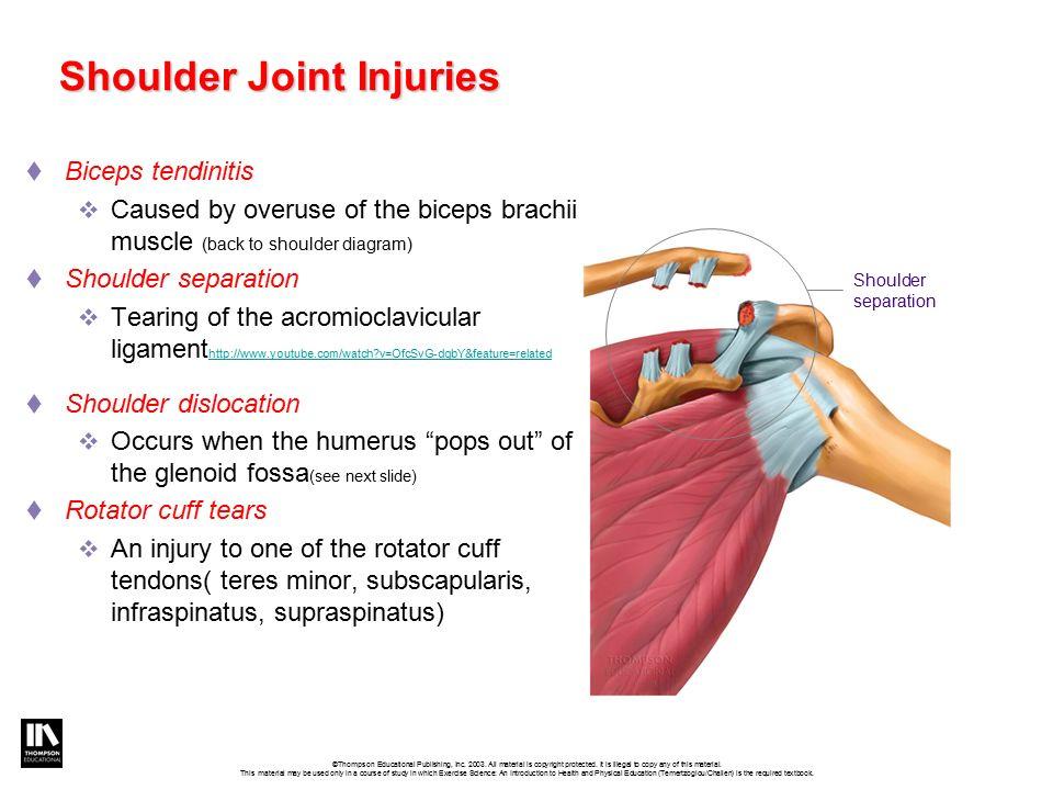 joint mechanics  u0026 joint injuries