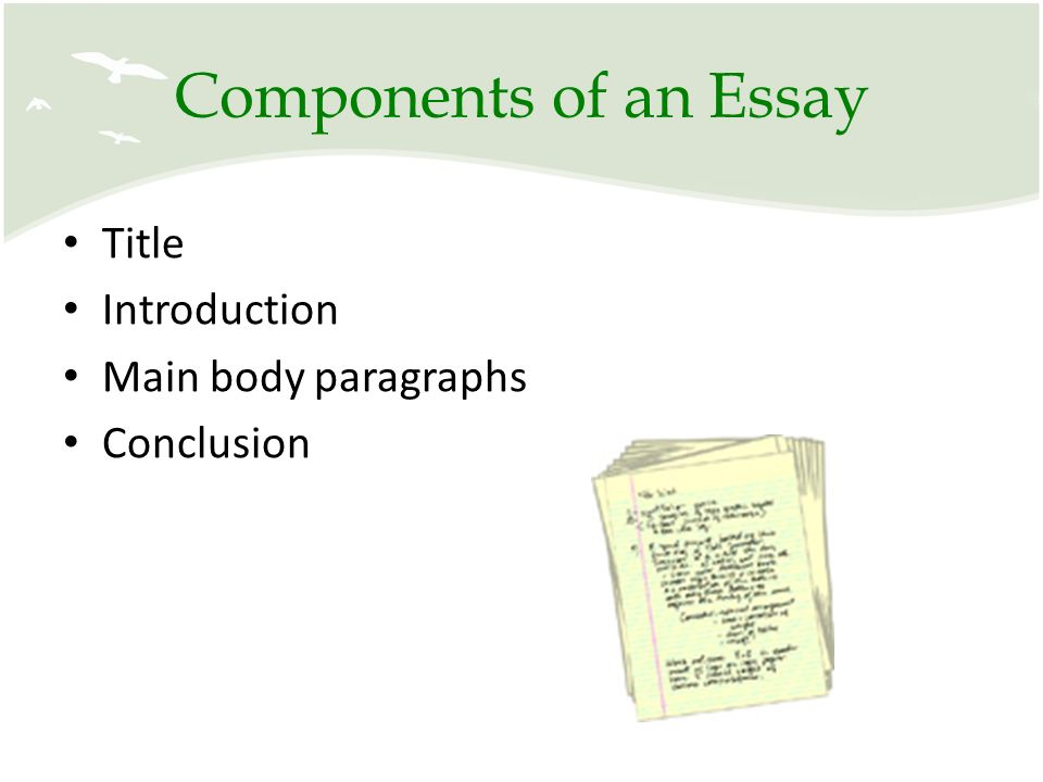 main components of an essay Cropping up a research paper is more complicated than writing a paper essay what are the components of research paper bring in all your major concerns in.