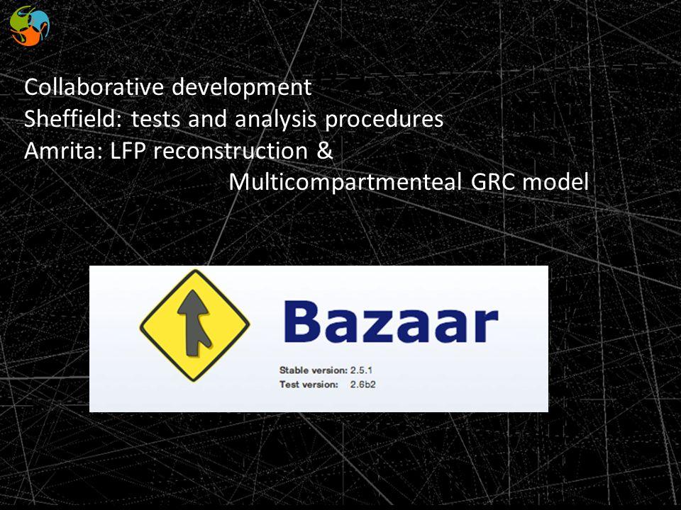 Collaborative development