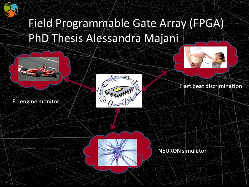 Field Programmable Gate Array (FPGA) PhD Thesis Alessandra Majani