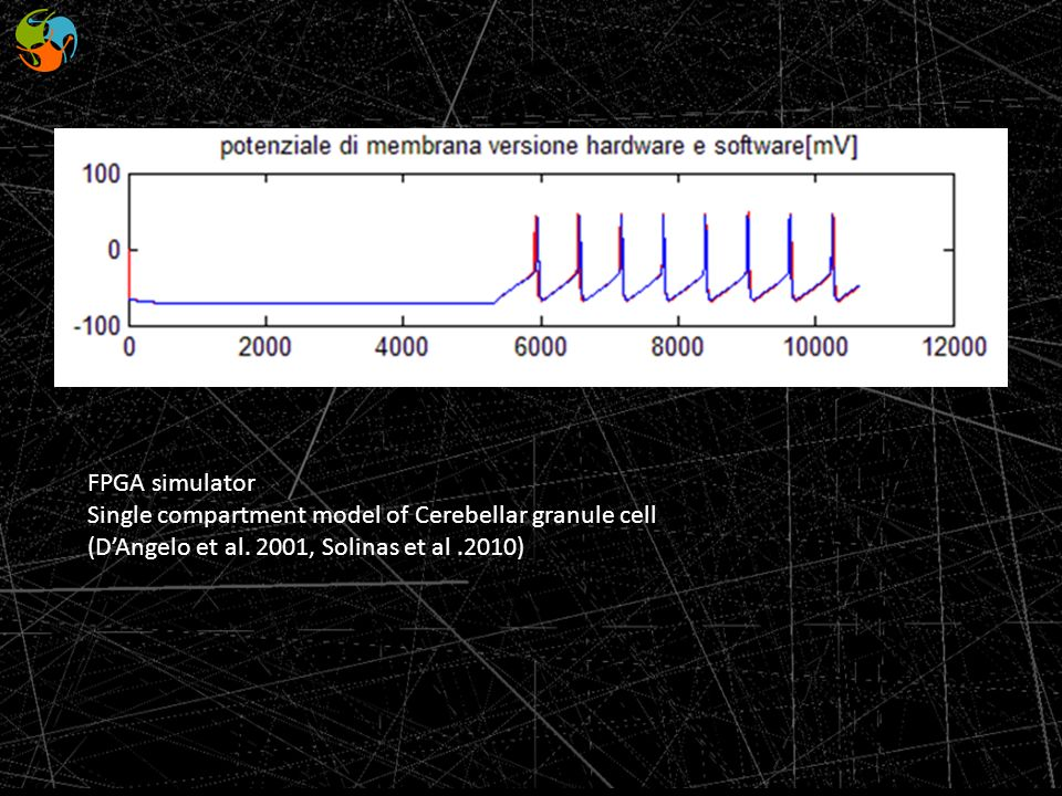 FPGA simulator Single compartment model of Cerebellar granule cell.