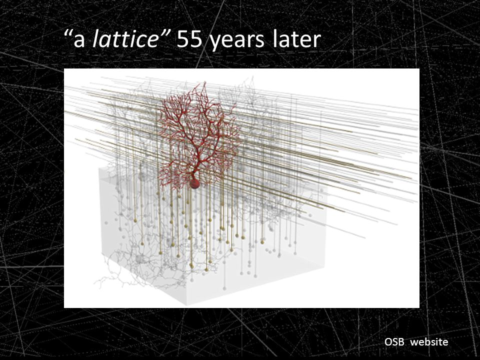 a lattice 55 years later