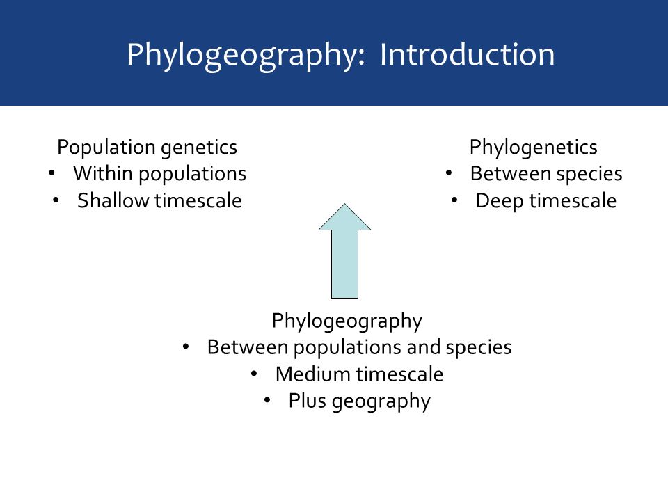 introduction on overpopulation