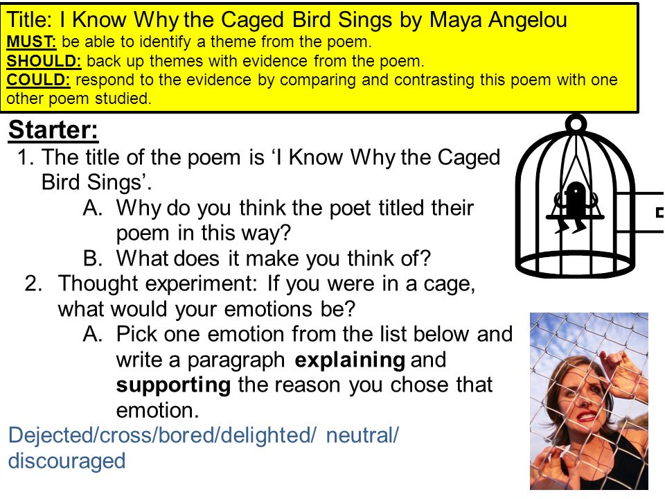 compare and contrast essay caged bird by maya angelou and Everything you need to know about the setting of maya angelou's i know why the caged bird sings, written by experts with you in mind.
