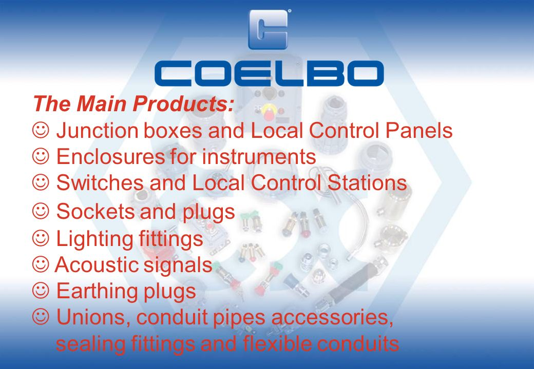 The Main Products: Junction boxes and Local Control Panels. Enclosures for instruments. Switches and Local Control Stations.