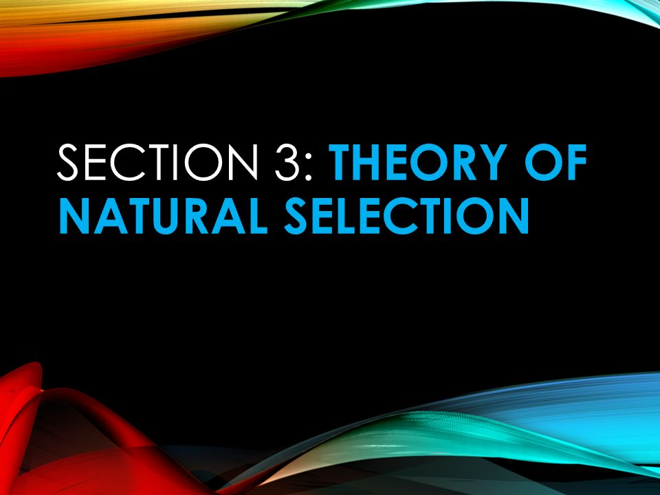 Section 3: Theory of Natural Selection