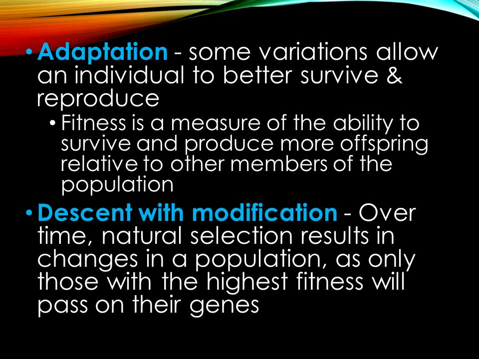 Adaptation - some variations allow an individual to better survive & reproduce