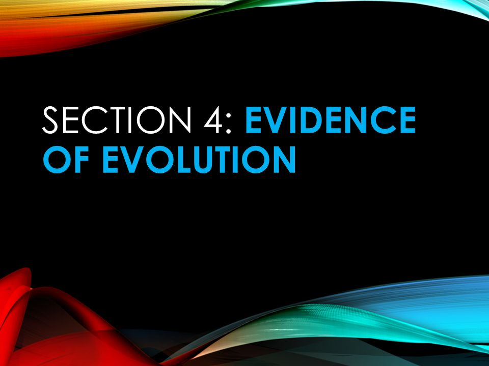 Section 4: Evidence of Evolution