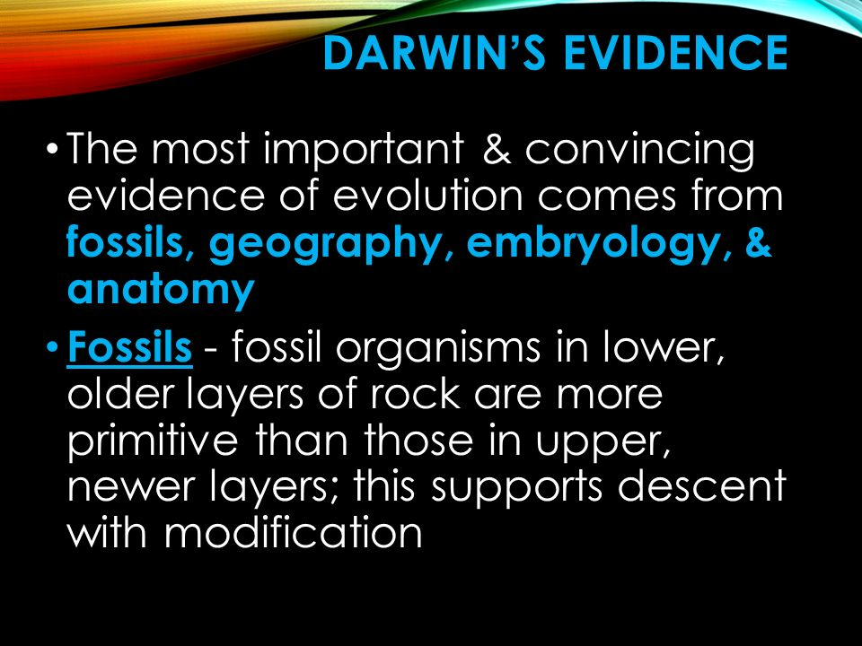 Darwin's Evidence The most important & convincing evidence of evolution comes from fossils, geography, embryology, & anatomy.