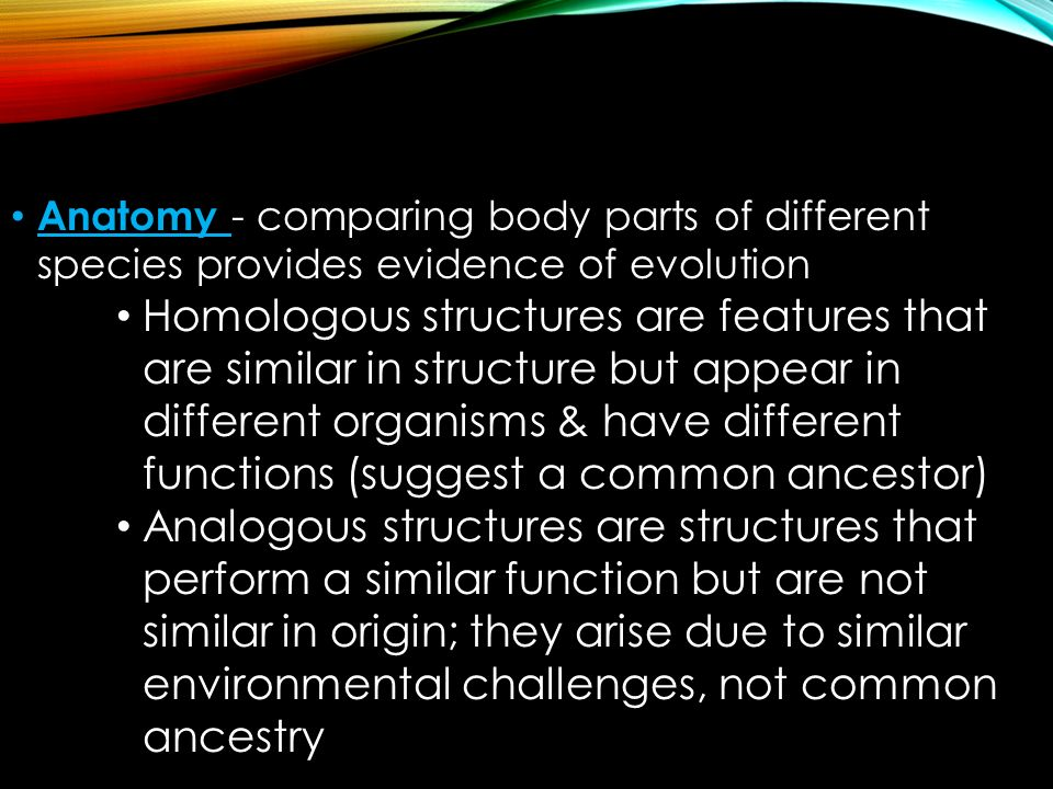 Anatomy - comparing body parts of different species provides evidence of evolution