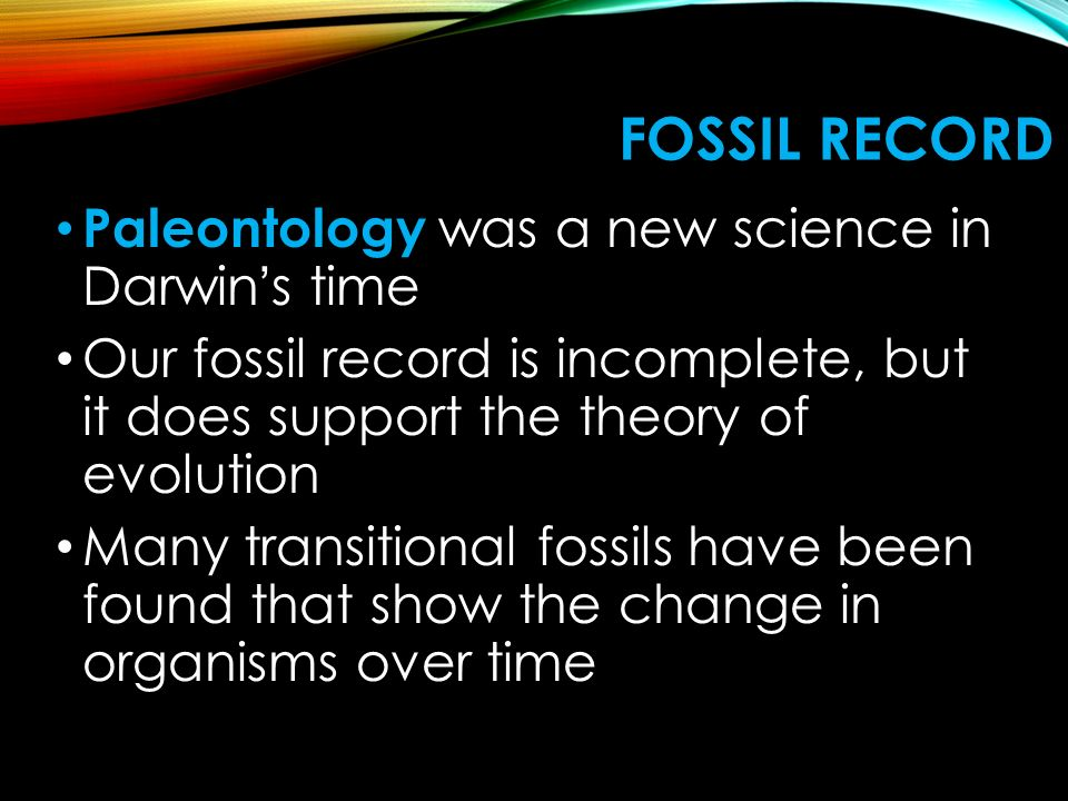 Fossil Record Paleontology was a new science in Darwin's time