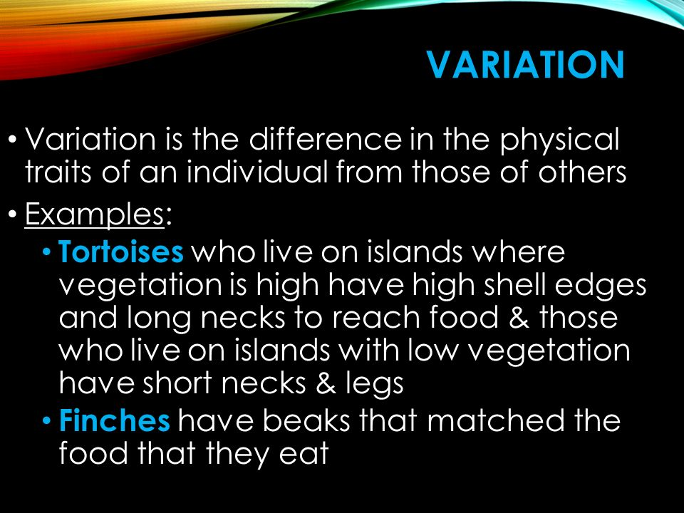 Variation Variation is the difference in the physical traits of an individual from those of others.