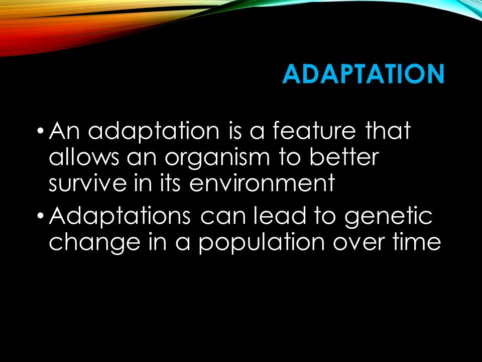 Adaptation An adaptation is a feature that allows an organism to better survive in its environment.