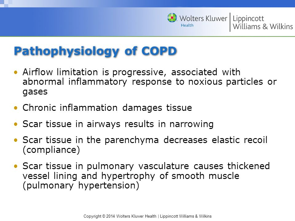 pathophysiology copd Augmenting autophagy for prognosis based intervention of copd- pathophysiology manish bodas and neeraj vijemail author respiratory research201718:83 © the author(s ) 2017 received: 15 february 2017 accepted: 20 april 2017 published: 4 may.