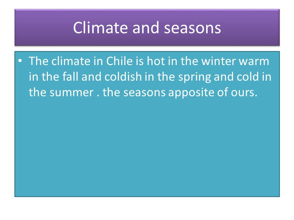 Chile By Chloe.