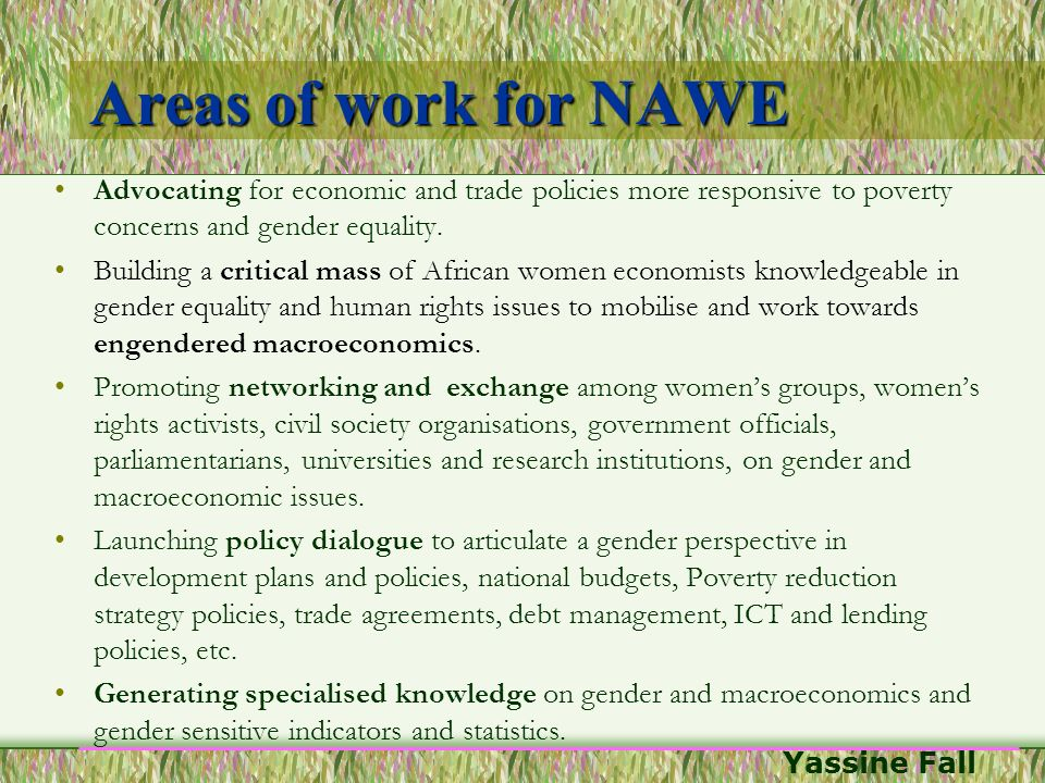 Areas of work for NAWE Advocating for economic and trade policies more responsive to poverty concerns and gender equality.